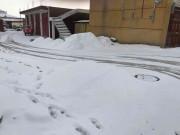 看雪🌨了。。。。。。