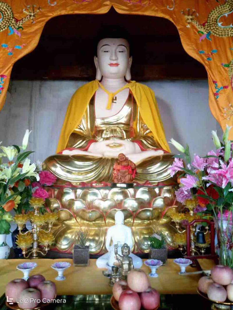 菩萨佛祖保佑我24号考科二了愿各位神仙陪我考过🙏🙏🙏